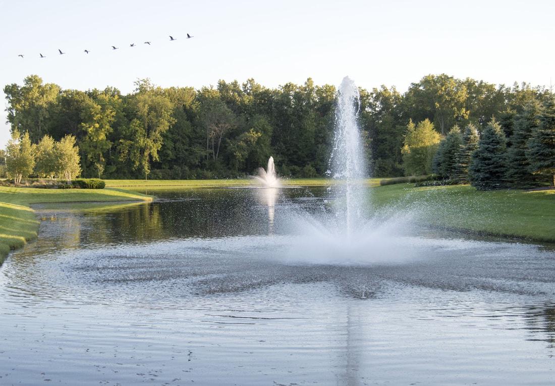 lago con fontana